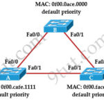 CCNA 200-125 Exam: STP Questions With Answers
